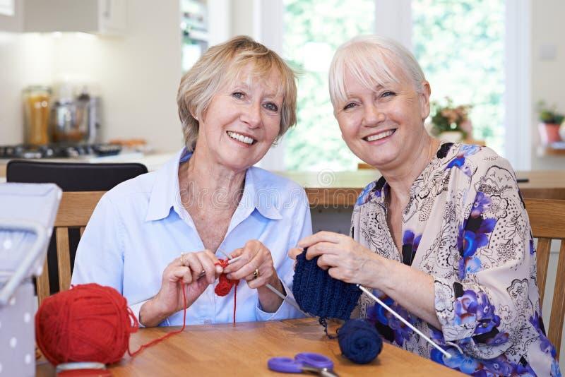 Un ritratto di due amici femminili senior che tricottano a casa insieme immagini stock