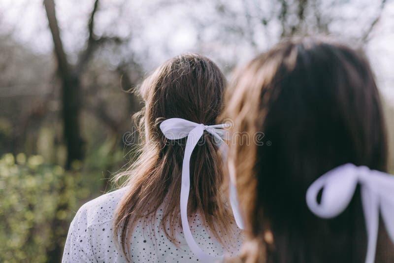 Un ritratto di due belle giovani sorelle nel giardino verde della molla, abbracciante nel campo nel sole Divertendosi insieme, fotografia stock libera da diritti