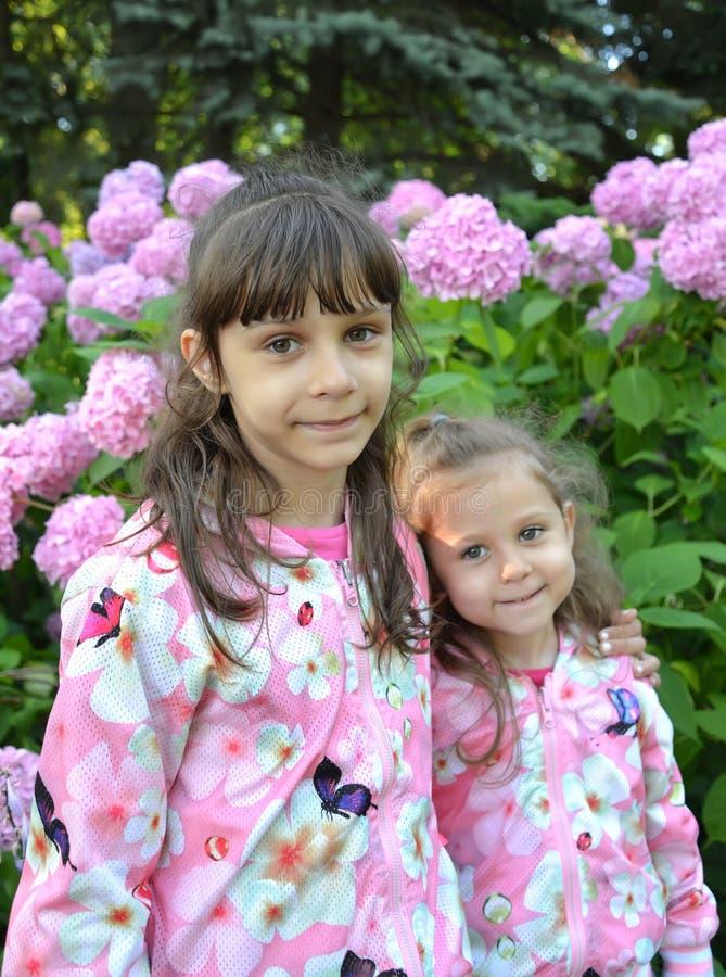 Un ritratto di due sorelle contro lo sfondo dello sbocciare dell'ortensia sbocciante fotografia stock libera da diritti