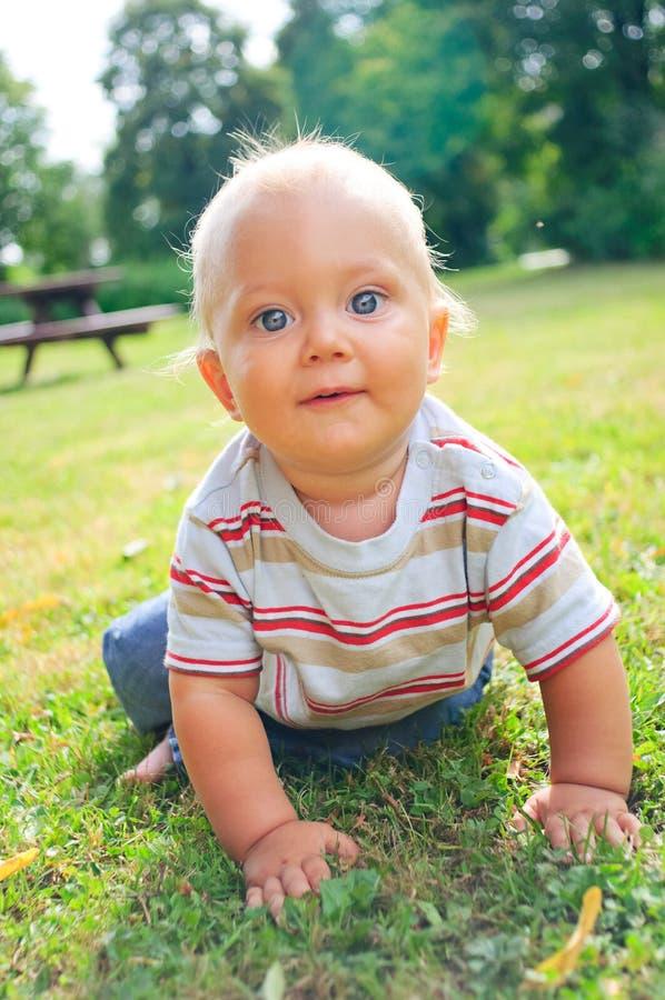Un ritratto di un ragazzino da 10 mesi fotografia stock libera da diritti