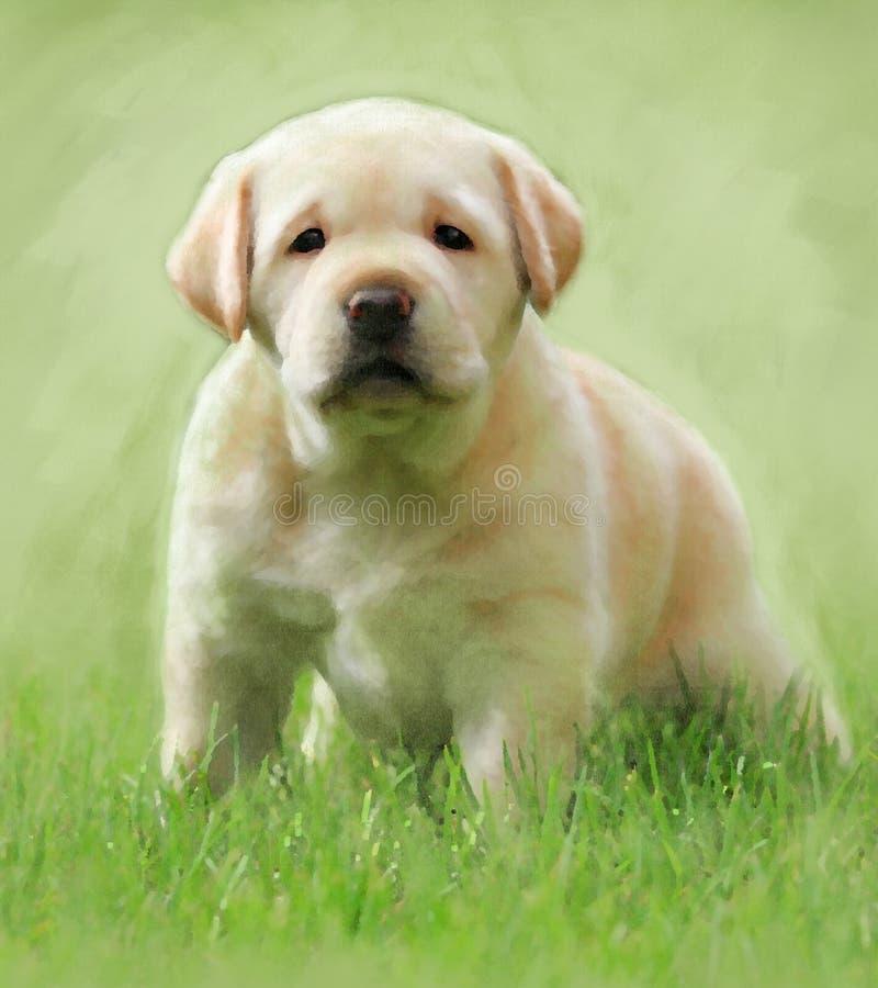 Un ritratto giallo dell'olio del cucciolo di labrador illustrazione di stock