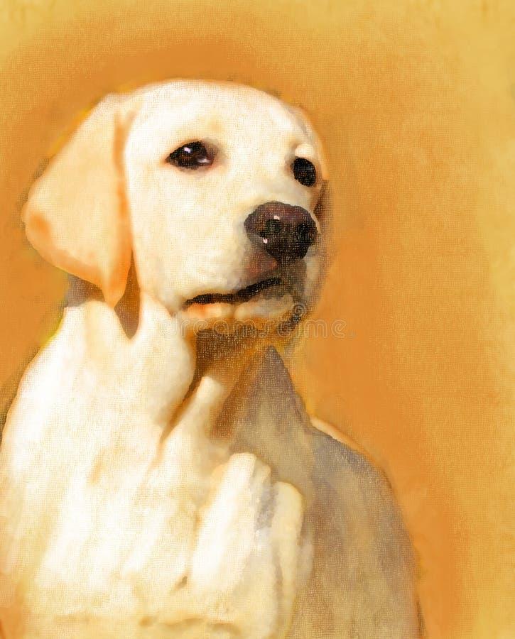 Un ritratto giallo dell'olio di labrador fotografia stock