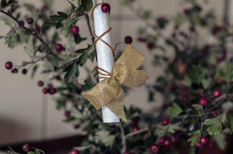 Un rouleau de papier attaché avec un fil d'or avec un arc sur une branche d'aubépine Tir ? la hauteur d'oeil Orientation molle images libres de droits