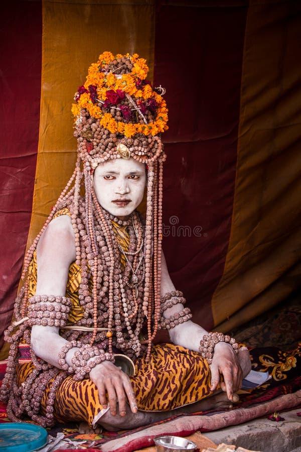 Download Un Sacerdote Hindú En El Kumbha Mela En La India Fotografía editorial - Imagen de peregrinaje, festivo: 42428992