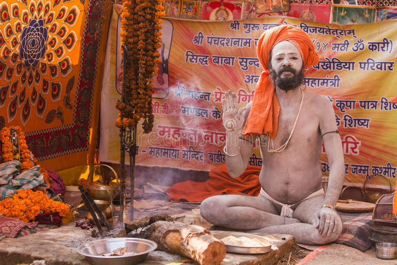 Download Un Sacerdote Hindú En El Kumbha Mela En La India Foto editorial - Imagen de asia, indio: 42429016