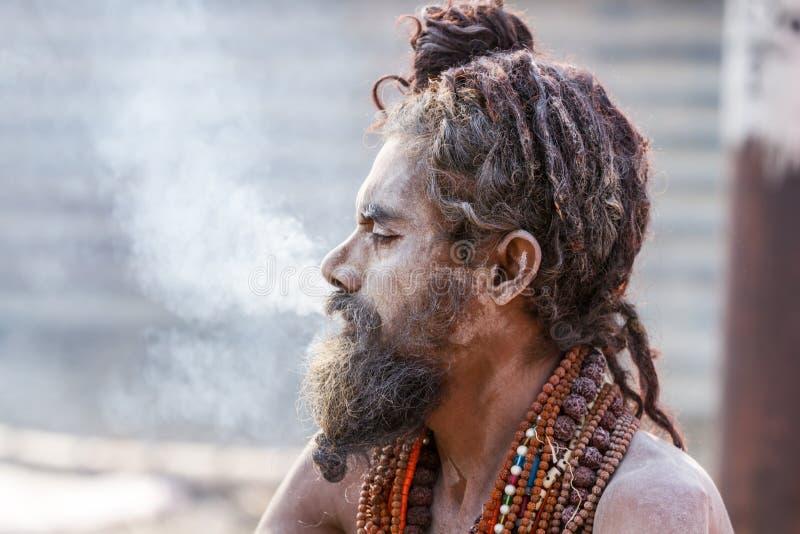 Download Un Sadhu Hindú Que Fuma Un Tubo De Hachís - La India Imagen de archivo editorial - Imagen de religioso, santo: 42428884