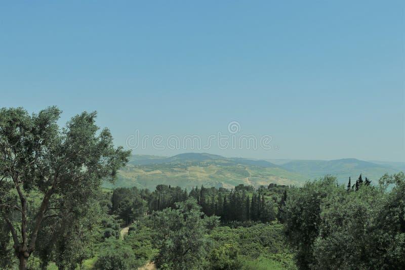 Un scape de terre en Jordanie images libres de droits