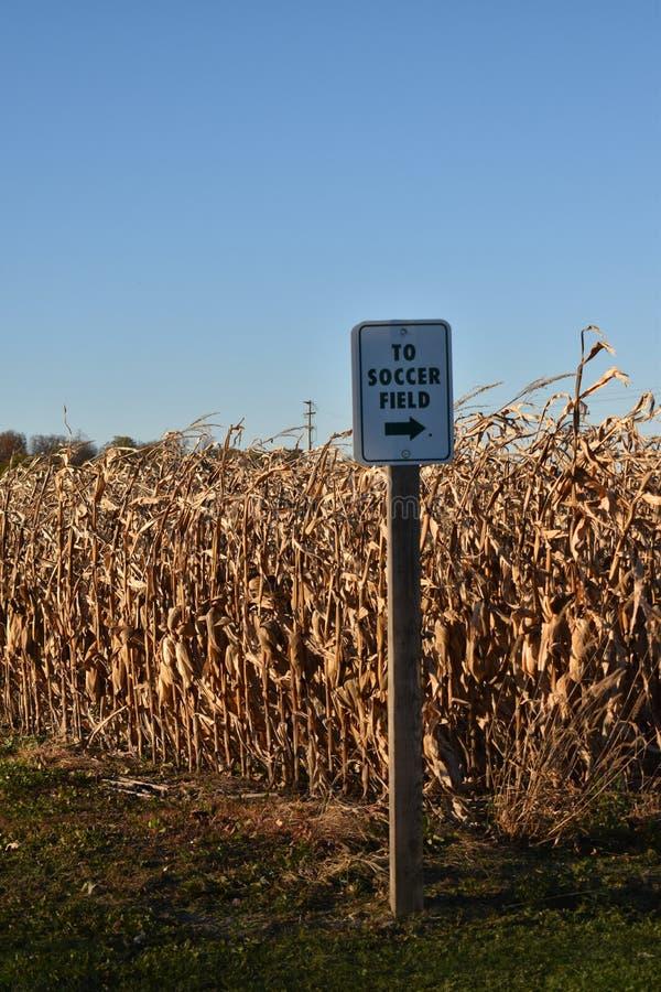 Un segno di modo che indica un campo di calcio sull'orlo di un campo di grano dell'alimentazione pronto per il raccolto fotografia stock