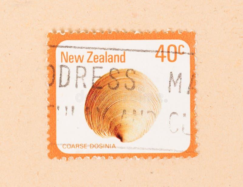 Un sello impreso en Nueva Zelanda muestra a cáscara Dosinia grueso, circa el an o 80 foto de archivo