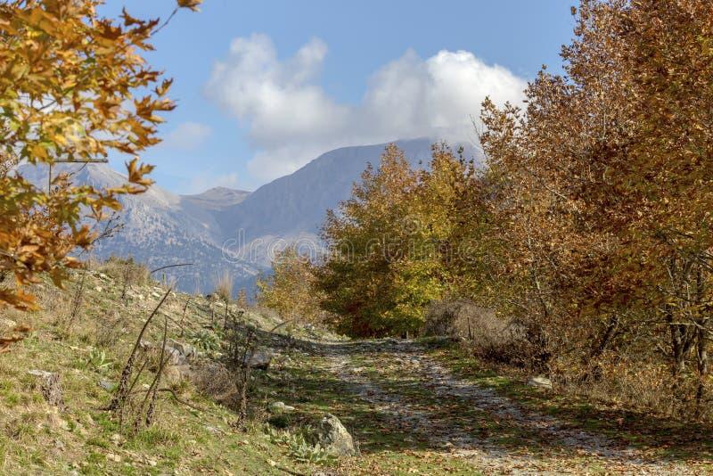 Un sendero estrecho, rural en las montañas en el día soleado Grecia, Peloponeso del otoño fotos de archivo