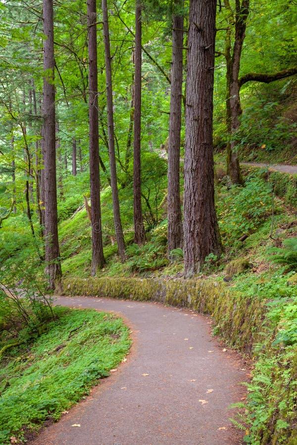 Un sentier de randonnée en gorge du fleuve Columbia, Orégon photo stock
