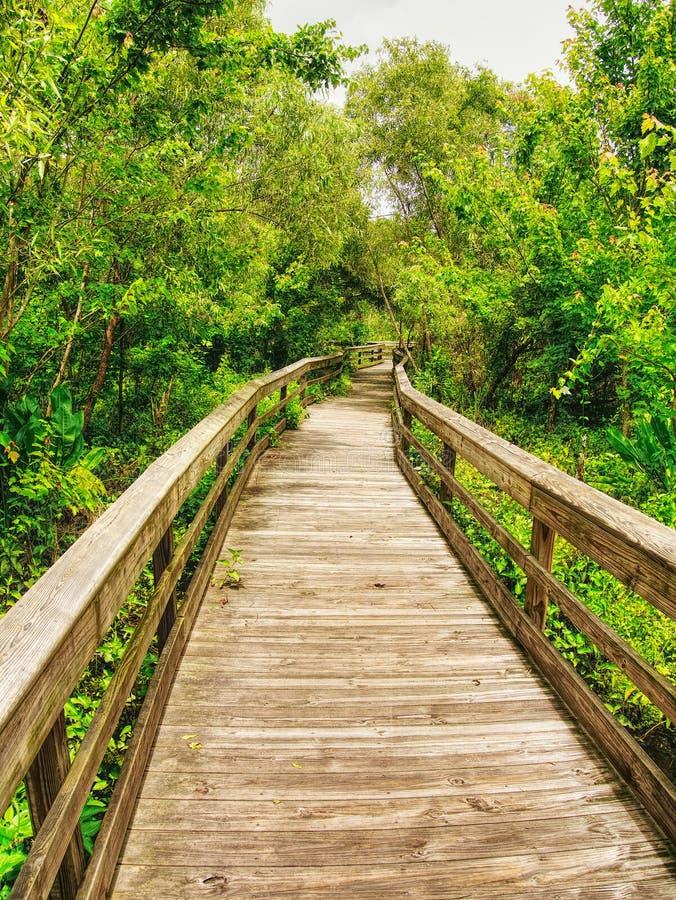 Un sentier piéton en bois pour marcher autour du jardin photos stock
