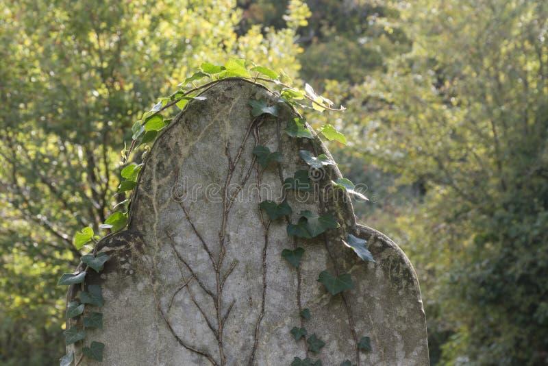 Un sepulcro overgrown imagenes de archivo