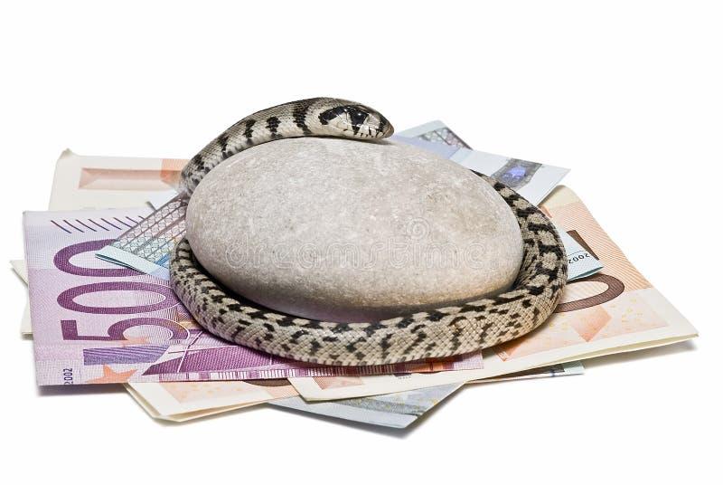 Un Serpent S Occupant De L Argent. Photo libre de droits