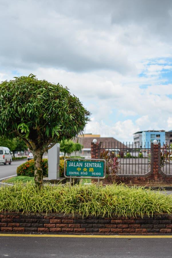 Un signage parmi les verts images stock