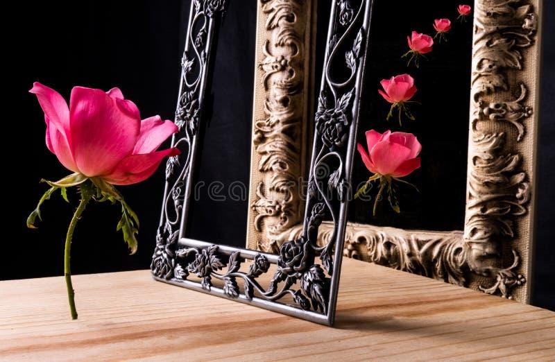 Un singolo rosa è aumentato supporti davanti ad uno specchio incorniciato con una cascata delle rose nella riflessione immagine stock