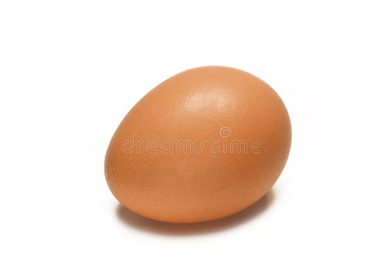 Un singolo uovo di Brown immagine stock