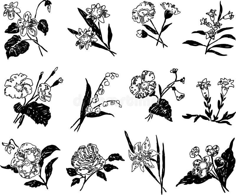 Un sistema de diversas flores exhaustas estilizadas stock de ilustración