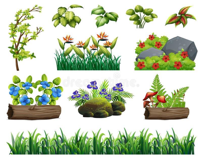 Un sistema de Forest Element stock de ilustración