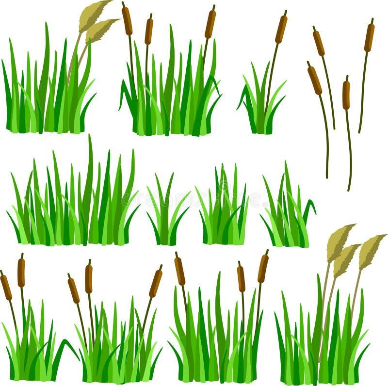 Un sistema de hierba, de cañas y de bastones de la historieta imagen de archivo libre de regalías