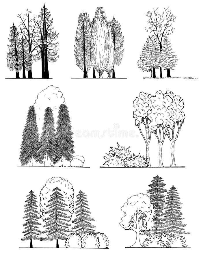 Un sistema de las siluetas del árbol para el diseño del paisaje ilustración del vector