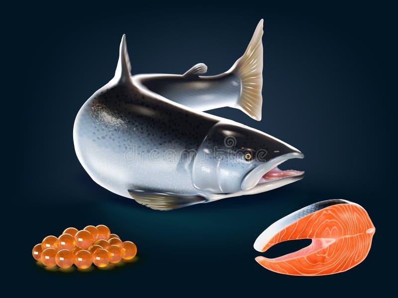Un sistema de los salmones frescos realistas, carne, huevo imagen de archivo libre de regalías