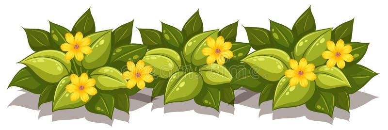 Un sistema de plantas de la flor ilustración del vector