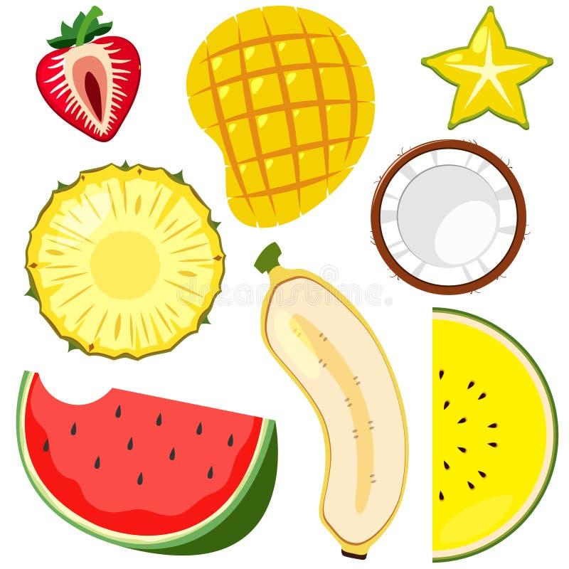 Un sistema del corte de la fruta medio ilustración del vector