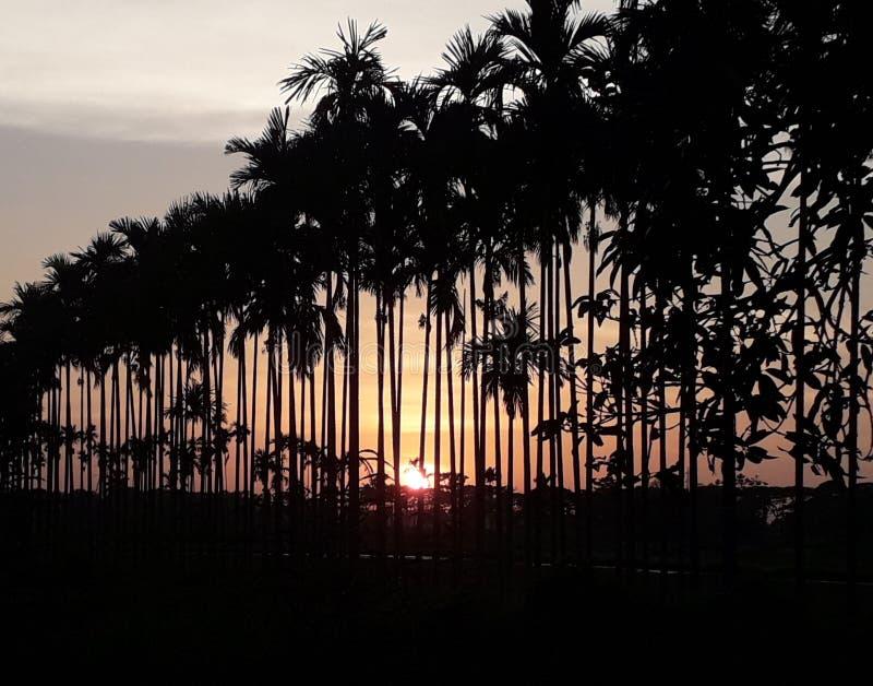 Un sol de la buena tarde en el oeste foto de archivo libre de regalías