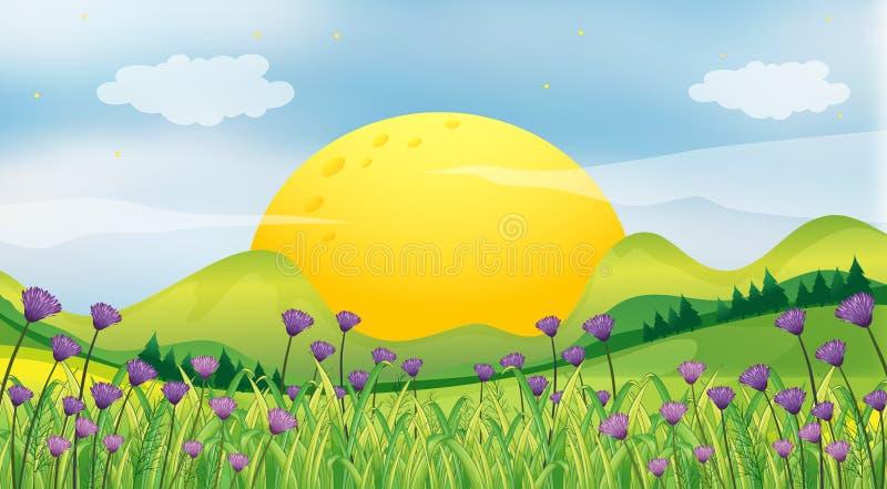 Un sol naciente stock de ilustración