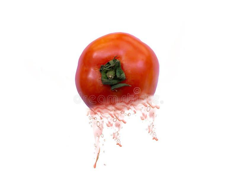 Un succo di pomodoro su fondo bianco immagini stock libere da diritti