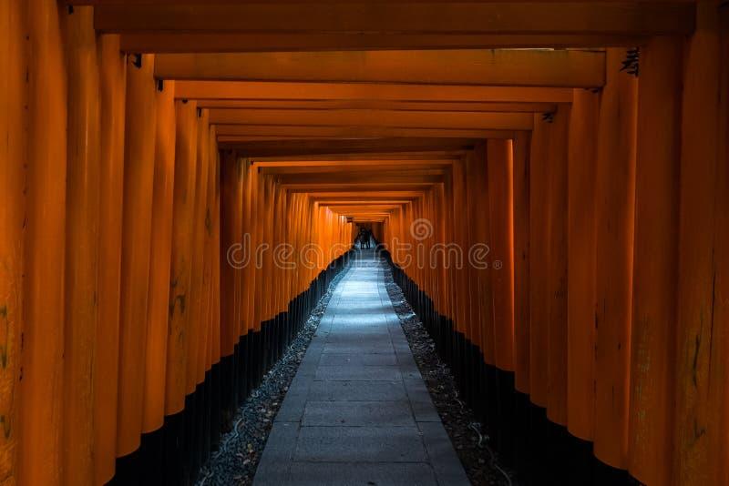 Un túnel de las puertas del torii en la capilla de Fushimi Inari, una capilla sintoísta importante en Kyoto meridional, Japón foto de archivo