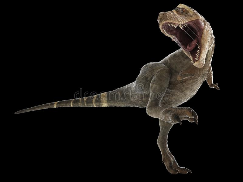 Un t-rex illustrazione vettoriale