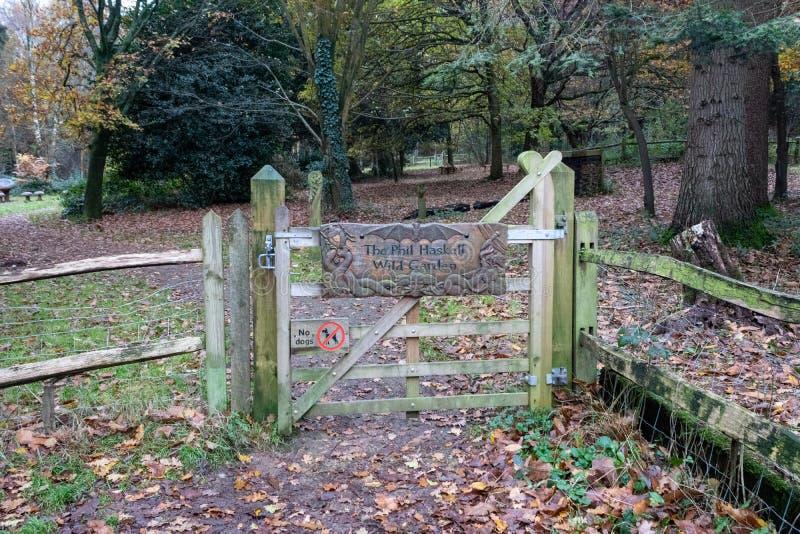 Un tardo giorno d'autunno a Buchan Park Crawley Regno Unito immagini stock libere da diritti