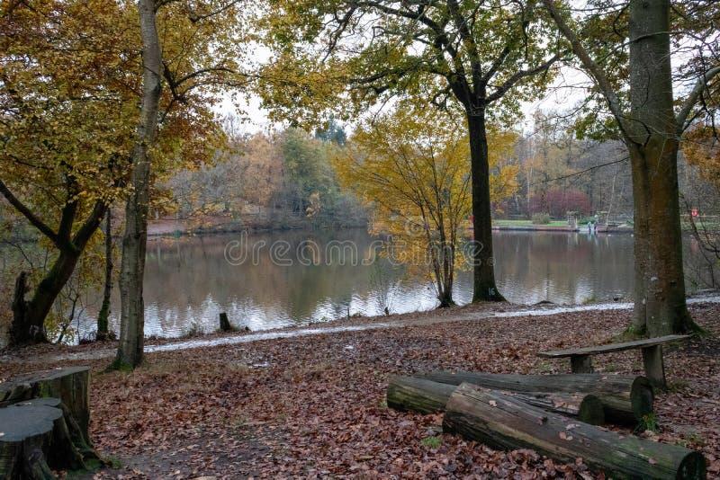 Un tardo giorno d'autunno a Buchan Park Crawley Regno Unito fotografie stock libere da diritti