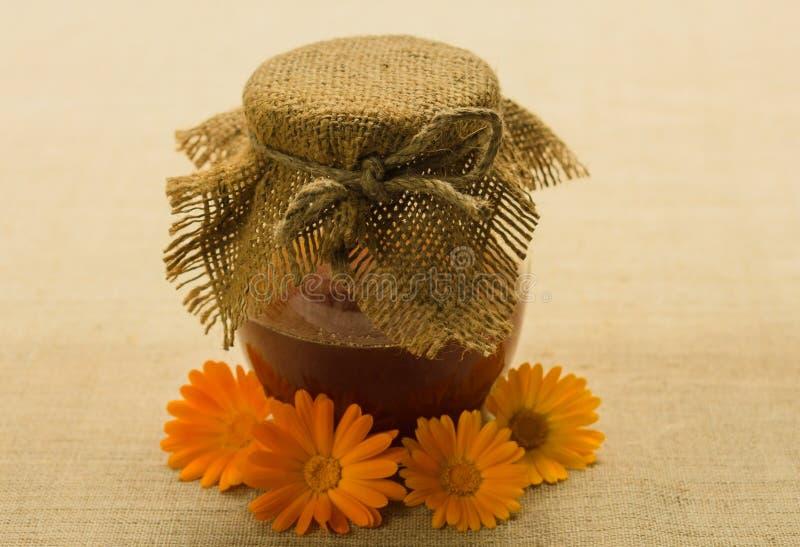 Un tarro de miel en la tabla Miel orgánica sana con el espacio de la copia imágenes de archivo libres de regalías