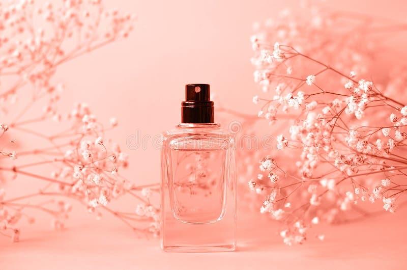Un tarro de perfume sin un casquillo con una puntilla del gypsophila fotos de archivo