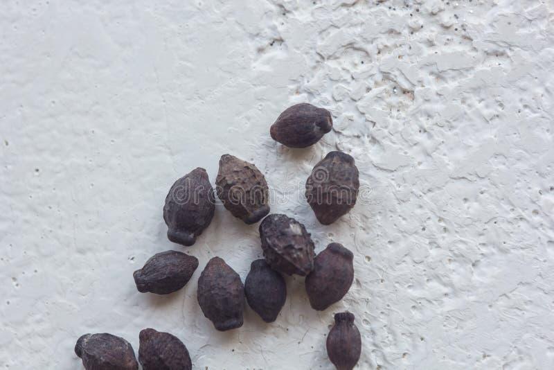 Un tas des graines de fleur noires s?ches en gros plan sur un fond blanc de table Plantation de la saison Fermez-vous vers le hau photo stock