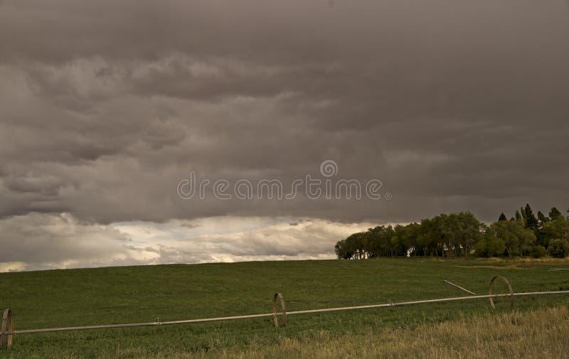 Un temporale di passaggio in Colorado fotografia stock