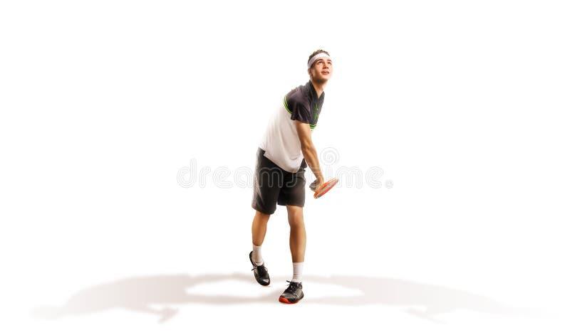 Un tennis isolato su fondo bianco immagini stock libere da diritti