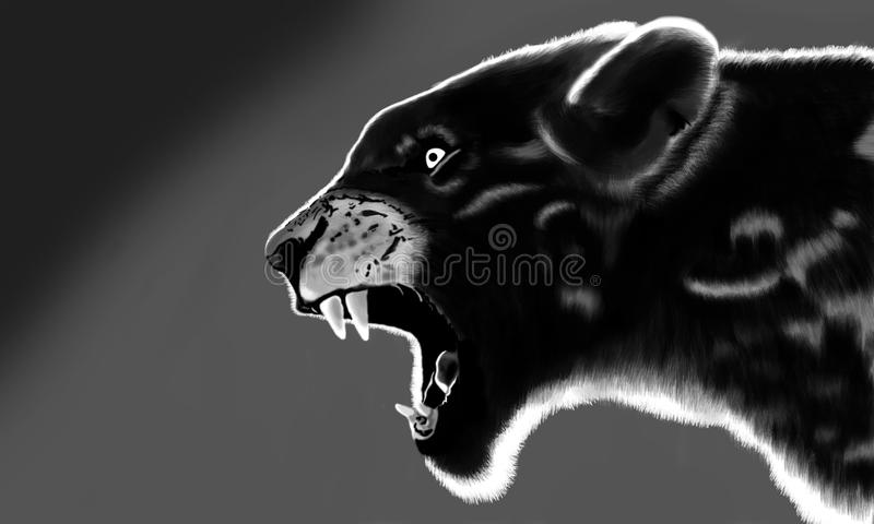 Un tigre noir et blanc de lueur photo stock