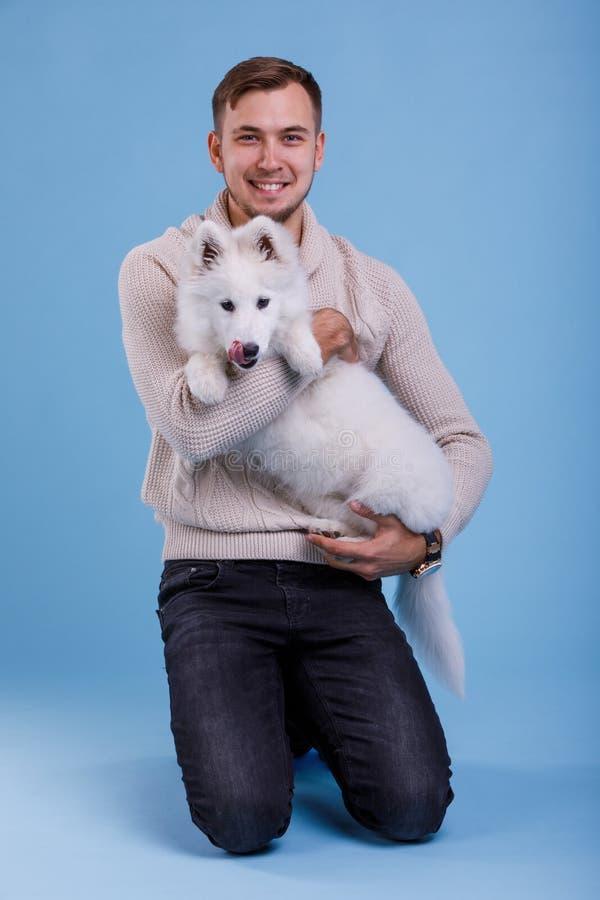 Un tipo europeo è sedentesi e giudicante un cucciolo samoiedo Su una priorità bassa blu immagini stock