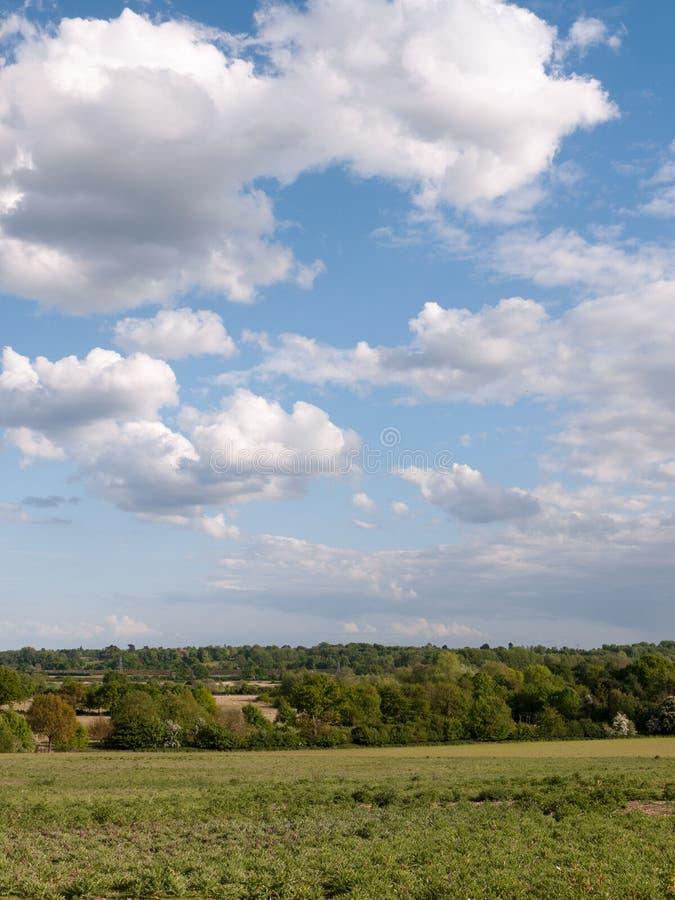Un tir vertical d'une scène de campagne avec l'herbe au fond images stock