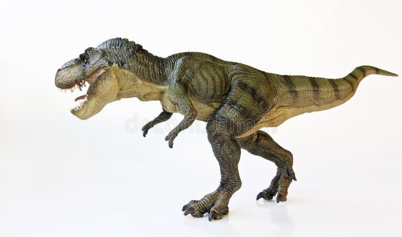 Un tirannosauro cerca su un fondo bianco immagine stock libera da diritti