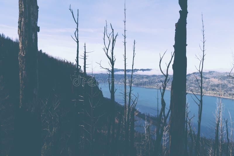 Un tiro hermoso de un lago imagen de archivo libre de regalías