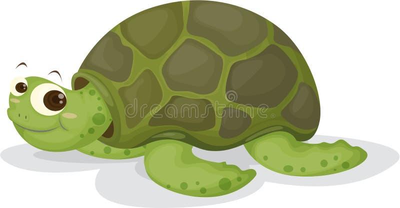 Un Tortoise illustrazione di stock