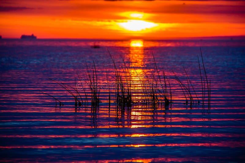 Un tramonto insolitamente bello del fuoco dal mare Tramonto sul golfo Tramonto al mare fotografia stock