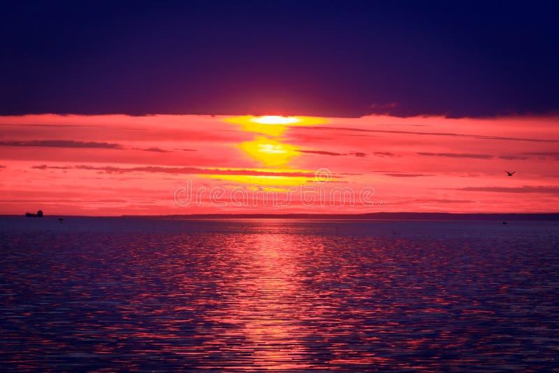 Un tramonto luminoso sul golfo di Finlandia Tramonto al mare Tramonto sul golfo Luce di sera, estate calda, cielo cremisi e picco immagini stock libere da diritti