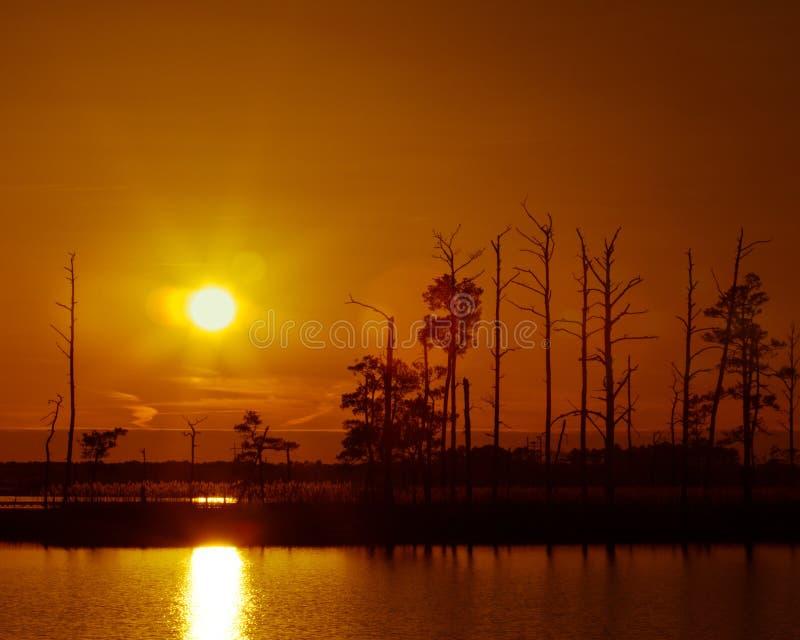 Un tramonto orientale della riva immagini stock