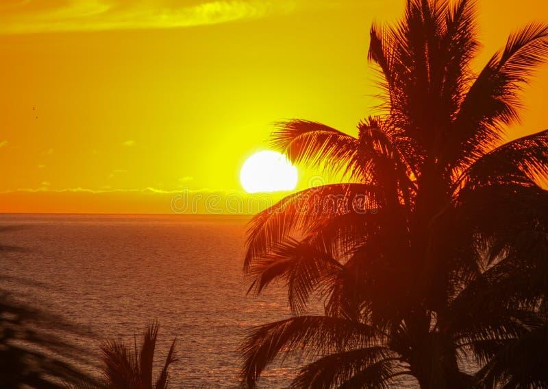 Un tramonto sulla baia di Banderas fotografie stock
